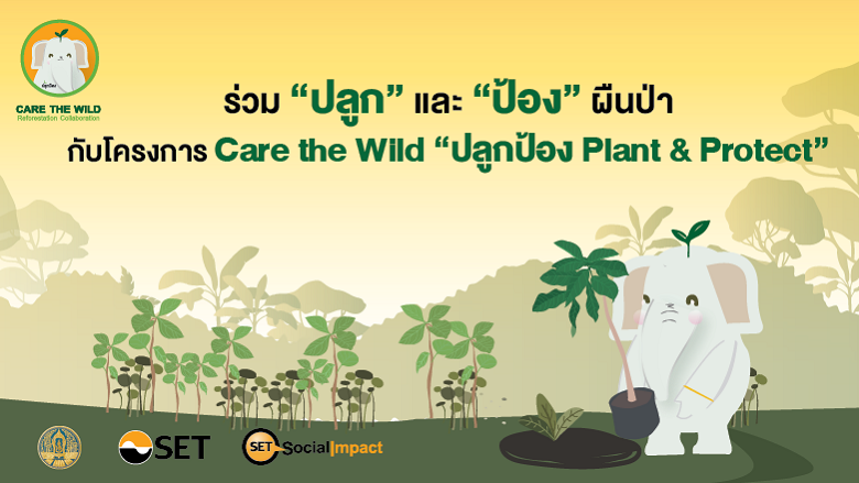 """ร่วม """"ปลูก"""" และ """"ป้อง"""" ผืนป่า...กับโครงการ Care the Wild """"ปลูกป้อง Plant & Protect"""""""