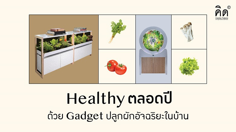 Healthy ตลอดปี ด้วย Gadget ปลูกผักอัจฉริยะในบ้าน