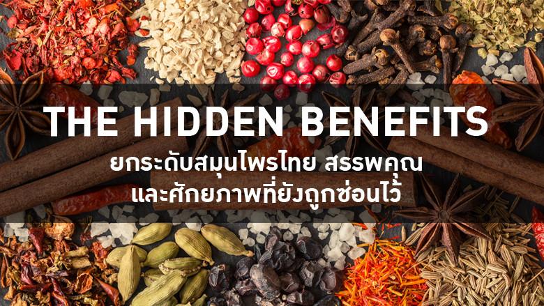 The Hidden Benefits ยกระดับสมุนไพรไทย สรรพคุณ และศักยภาพที่ยังถูกซ่อนไว้
